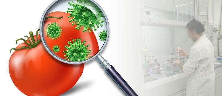 Analisi microbiologiche alimenti, superfici ambienti ed acque potabili